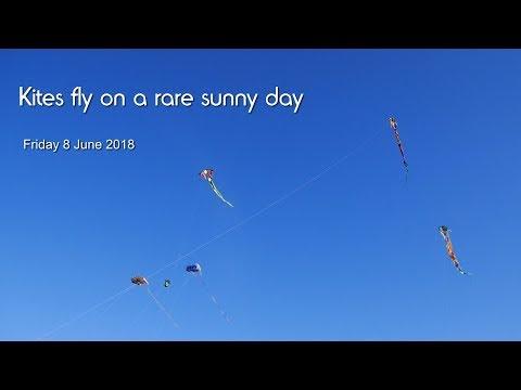 Kites fly on a rare sunny day