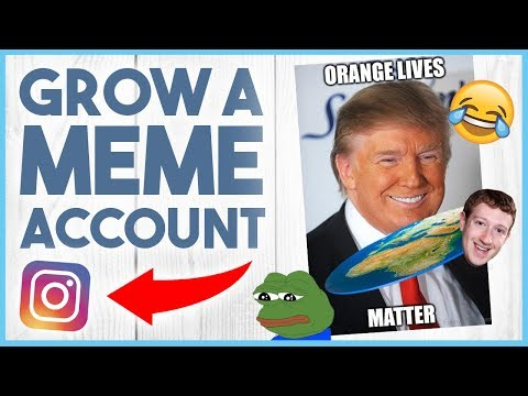 😂 HOW TO GROW A MEME PAGE ON INSTAGRAM - THE NICHE PROJECT #2 😂