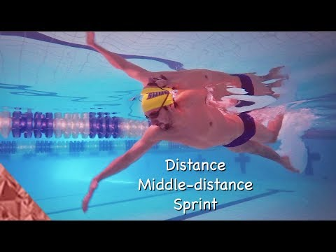 Different freestyle techniques  How to swim a freestyle race