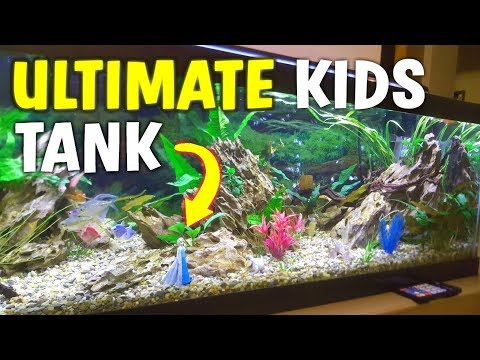 ULTIMATE KIDS PLANTED AQUARIUM (WITH A TWIST!)