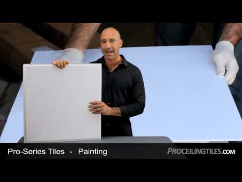 Pro Series - Painting Ceiling Tiles