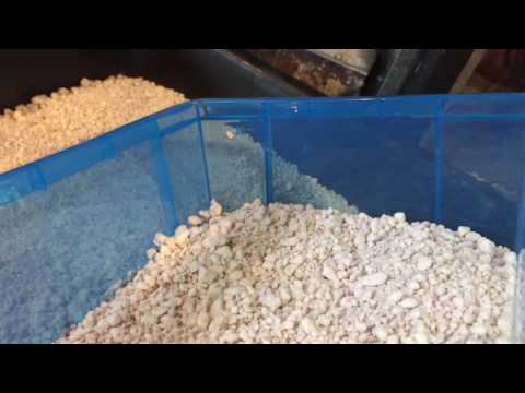 DIY Reptile Egg Incubator, cheap and easy incubation for success!