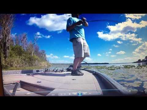 Frog fishing lake griffin