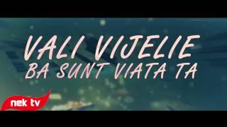 Download Vali Vijelie - Ba sunt viata ta [lyric video] 2014