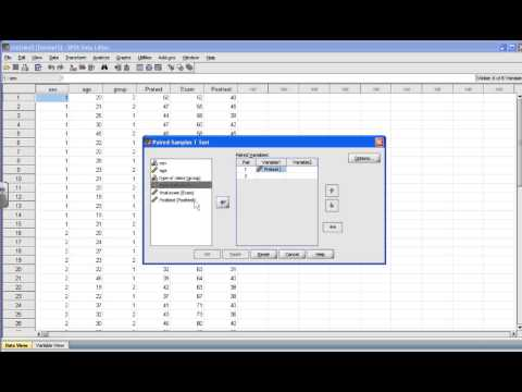 SPSS Tutorial: Paired Sample t test