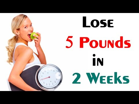 Lose 5 Pounds in 2 Weeks