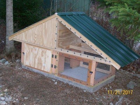 Build a Duck Coop (Part 5 of 5) Epilogue