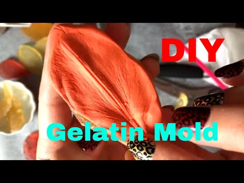DIY. Best Gelatin Mold Recipies Tutorial