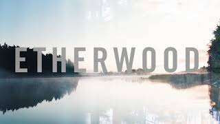 Etherwood - Frozen Grass