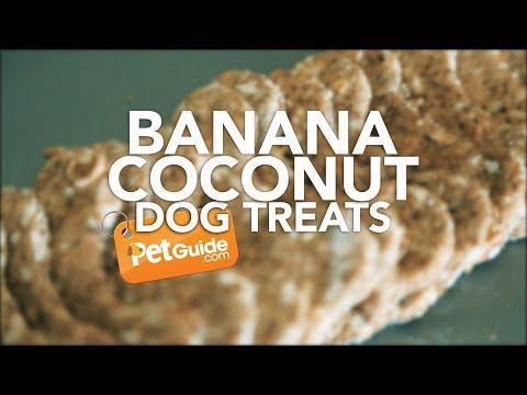Banana Coconut Dog Treat Recipe