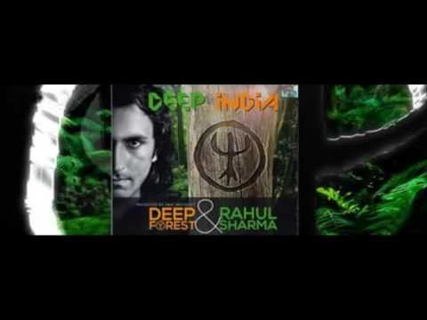 Deep Forest & Rahul Sharma-Bihu (Assam)