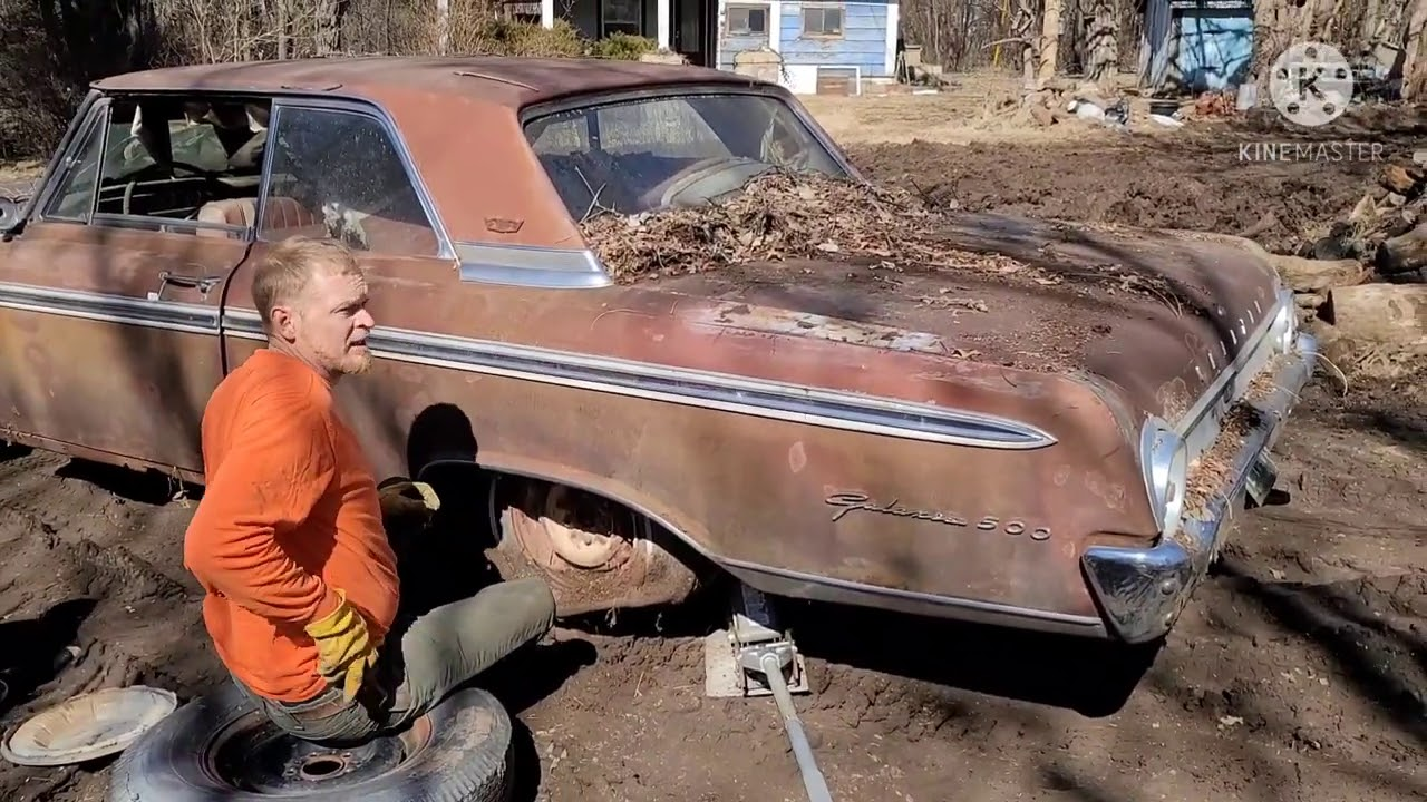 Abandoned cars rescued from the woods! 1950 Plymouth sedan + 1962 Ford Galaxie 500 Resting Relics!