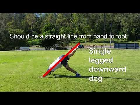 Beginner Yoga Tutorial 2 - Single Legged Downward Dog to Plank variation