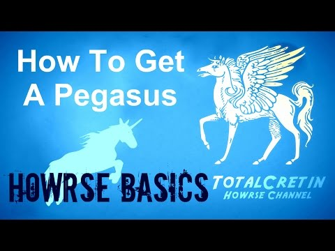 How To Get A Pegasus - Howrse Basics