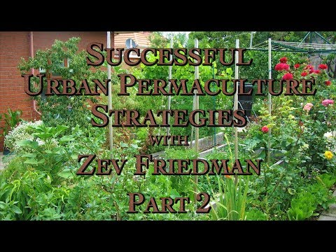 Successful Urban Permaculture Strategies with Zev Friedman Part 2