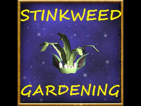 Wizard101 : How to get gold quickly with gardening