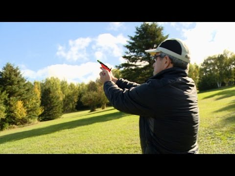 Don't Shoot at the Birds
