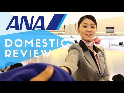 ANA Domestic Flight Review to Tokyo | How Good is it?