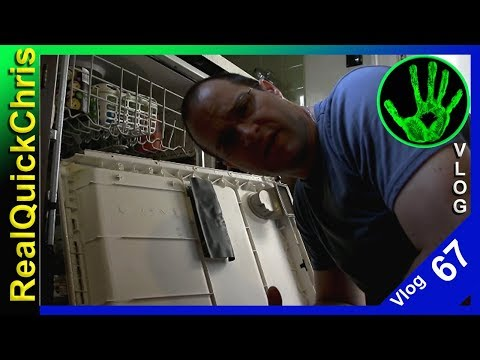 Ants in the dishwasher realquickchris vlog 67