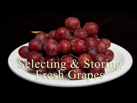 How To Select & Store Fresh Grapes (Home Cooking 101) DiTuro Productions