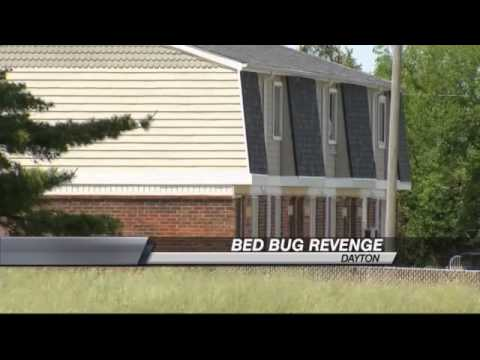 Woman Fed Up With Bed Bugs Gets Revenge with Apartment Management