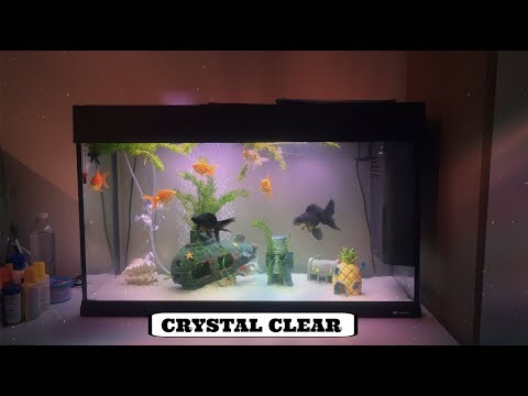 HOW TO GET CRYSTAL CLEAR WATER IN FISH TANK (OVERSTOCKED FISH TANK)!