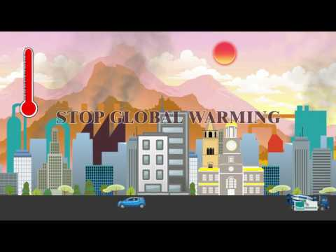 Protect and Conserve Forests to Stop Global Warming