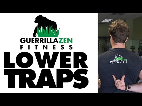 Lower Trap Strengthening Exercises | Postural Improvement