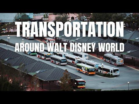 How To Disney: Transportation Around Walt Disney World