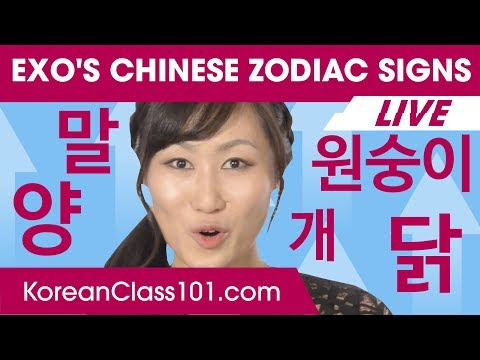 EXO's Chinese Zodiac Signs & Your Fortune for 2018 | Learn Korean
