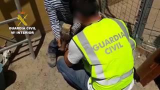 Maltrato animal en Huelva