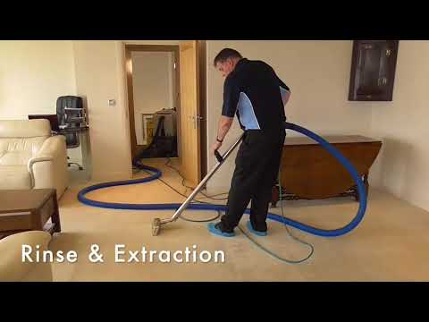 Jute Rug Cleaning How to Clean Carpet