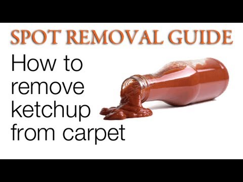 How to Get Ketchup out of Carpet | Spot removal Guide