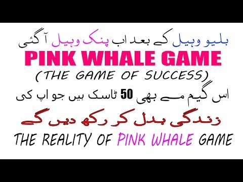 Pink Whale Vs Blue Whale Game   Pink Whale Game   All Missions  How To Download  Tech Urdu  