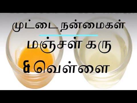 Egg Benefits in Tamil | கோழி முட்டை நன்மைகள்