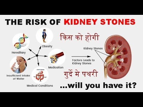 किसको होगी गुर्दे मे पथरी | What Causes Kidney Stones : Are you at Risk? (in HINDI) by Dr.Education