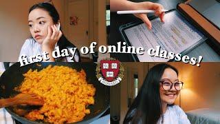 first day of online classes: harvard sophomore vlog!    pre-med neuroscience 🧠