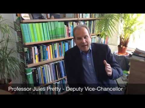 Ask the Academic: Professor Jules Pretty on Revision, University of Essex