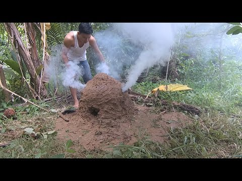 charcoal made from coconut shells | Primitive Technology