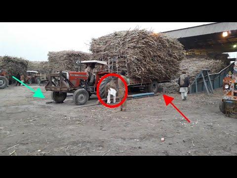 Massey 375 Reverse Sugarcane Trolley on Hydraulic Jack in Sugar Mill