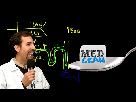 Acute Renal Failure Explained Clearly by MedCram.com | 2 of 3