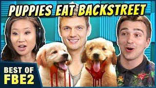 PUPPIES EAT THE BACKSTREET BOYS (100% CLICKBAIT)