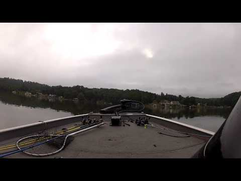 Smith Mountain Lake Bass