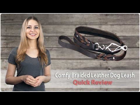 Handcrafted Braided Leather Dog Leash - Just-a-Cinch - Quick Review