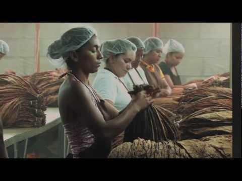Genesis Documentary - Production at Camacho Cigars