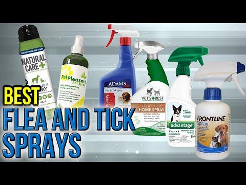 7 Best Flea And Tick Sprays 2017