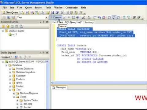 Working with constraints in SQL Server 2005 - wingslive