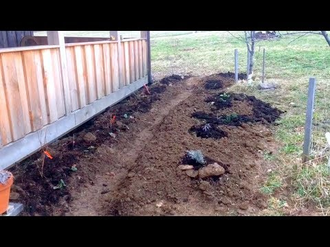 Garden Installation for Friends - A Simple Overview