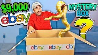 $9,000 eBay MYSTERY BOX ! **THEY SENT ME ANIMALS**