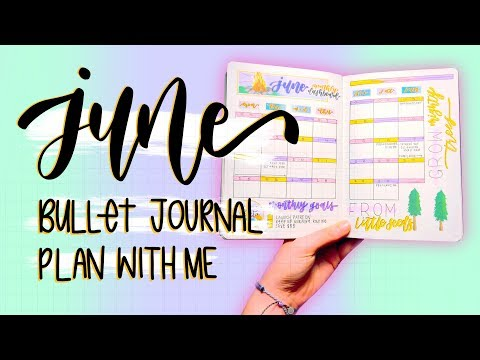 Plan With Me (and my kitten!) || June 2018 Bullet Journal Setup